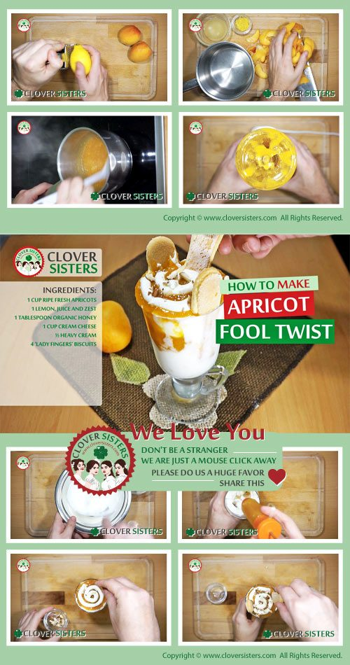 apricot fool twist recipe