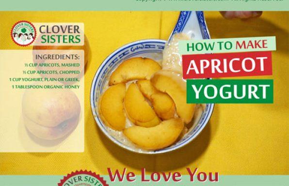 homade apricot yogurt recipe