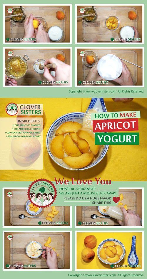 homade apricot yogurt recipe