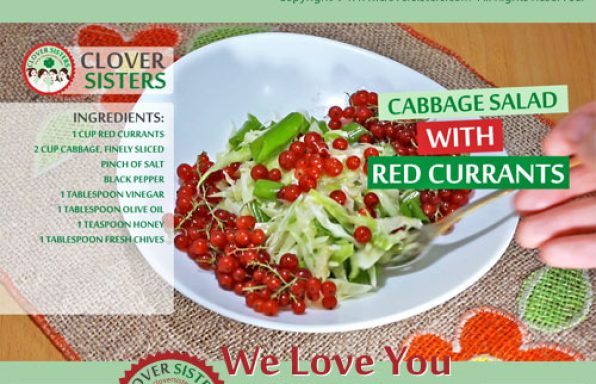 cabbage salad red currants recipe