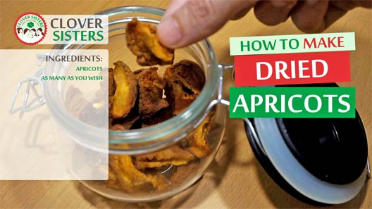 dried apricots recipe