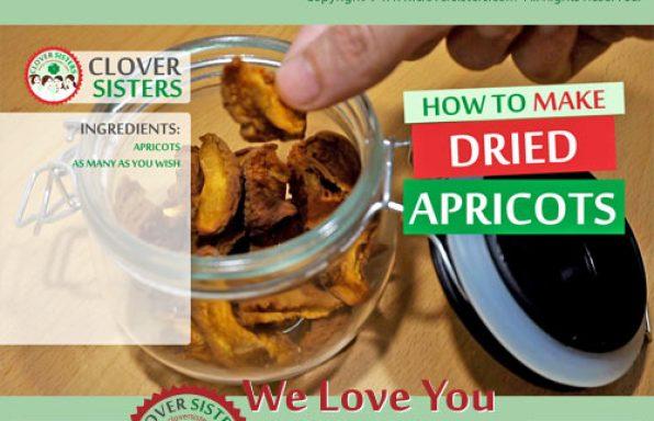 dried apricots recipe