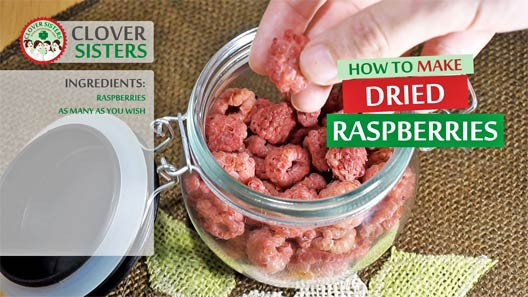 homemade dried raspberries recipe