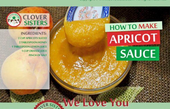 fresh apricot sauce recipe
