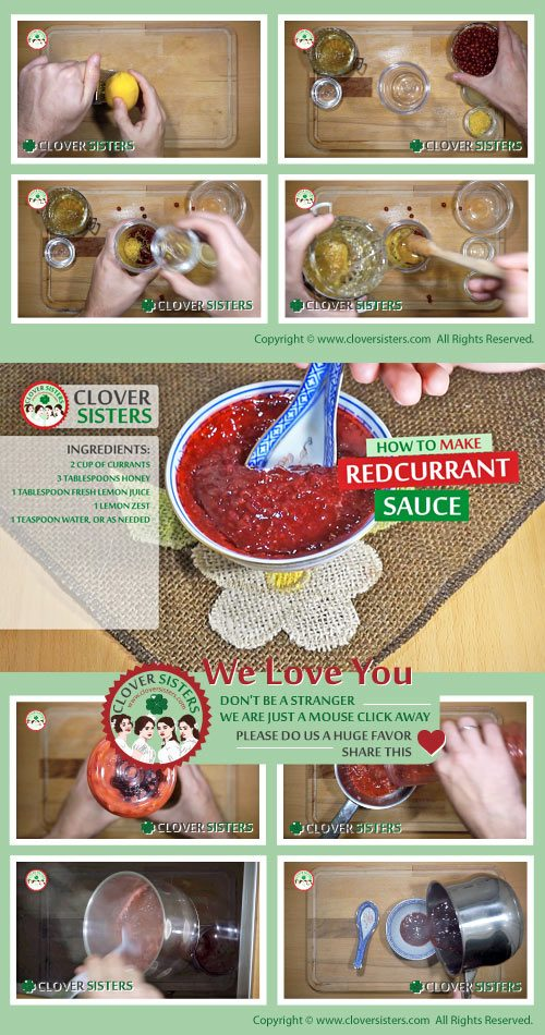 homemade redcurrant sauce recipe