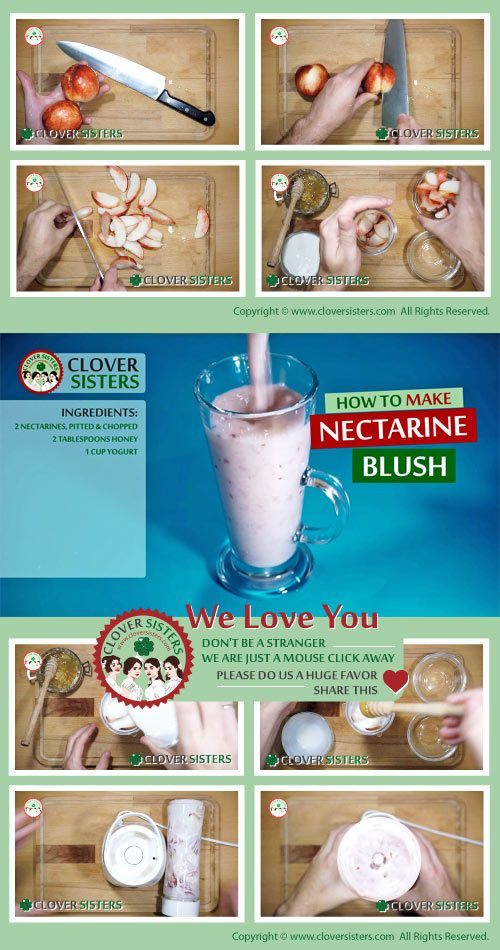 nectarine blush smoothie recipe