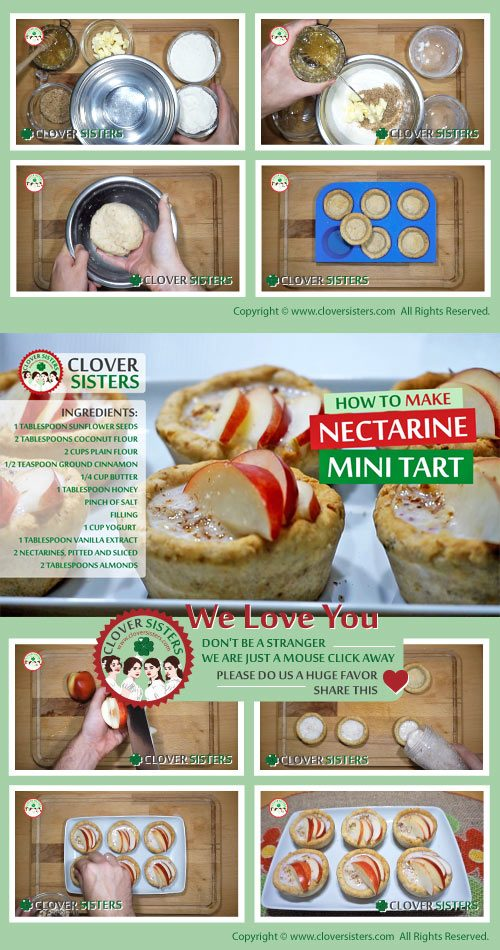 nectarine mini tart recipe