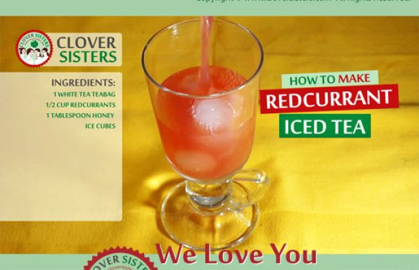 redcurrant iced tea recipe
