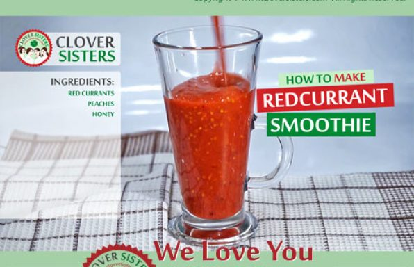 redcurrant smoothie recipe